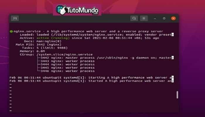 Instalar el servidor Nginx
