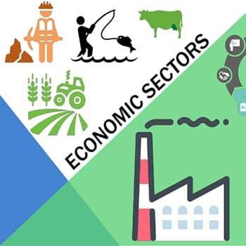 Sectores económicos